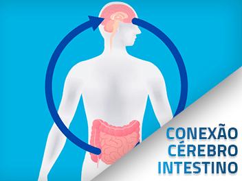 Relação entre o cérebro e intestino