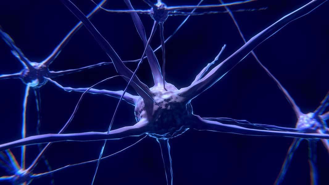 sobre a doenca demencia